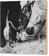 hiker hillwalker wearing boots waterproofs and rucksack in the highlands of Scotland UK Wood Print