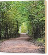 Hiking At Sundown Wood Print