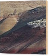 Hiking In The Painted Hills Wood Print