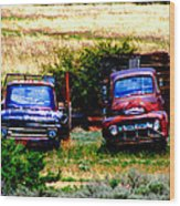 Hill Billy Used Auto Sales Wood Print by Andrea Camp