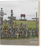 Hill Of Crosses 01. Lithuania Wood Print