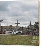 Hill Of Crosses 05. Lithuania Wood Print