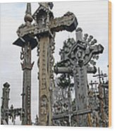 Hill Of Crosses 09. Lithuania Wood Print
