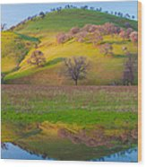 Hill Reflection In Pond Wood Print