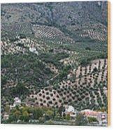 Hills Dales And Vineyards Wood Print by Lorraine Devon Wilke