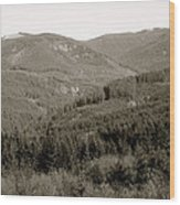 Hills In Black And White Wood Print