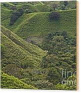 Hills Of Caizan 2 Wood Print