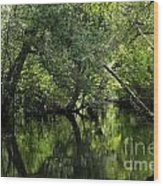 Hillsborough River Reflections Wood Print