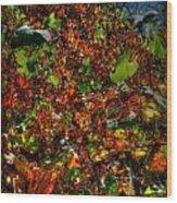 Hillside Colors Wood Print
