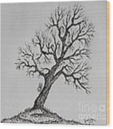 Hilltop Crooked Tree Wood Print