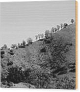 Hilltop In A Row - Black And White Wood Print