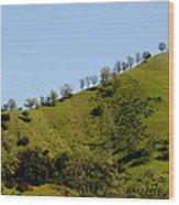 Hilltop Lineup Wood Print
