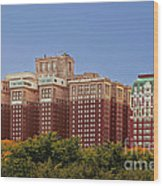 Hilton Chicago And Blackstone Hotel Wood Print by Christine Till