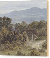Hindhead From Sandhills Witley Wood Print