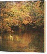 Hint Of September Wood Print by Jai Johnson