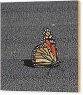 Hitchiker 5782 Wood Print