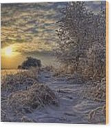 Hoar Frost Covered Trees At Sunrise Wood Print