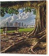 Hobbit Eyeview Wood Print