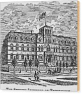 Hoboken: College, 1878 Wood Print