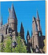 Hogwarts Summer Wood Print
