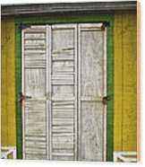 Holliwood Beach Door Wood Print