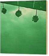 Hollywood Pool Wood Print