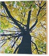 Homage To Georgia O'keefe Wood Print by Todd Sherlock