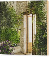 Home Entrance And Courtyard Wood Print