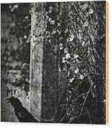 Homebound Wings Wood Print