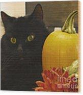 Black Cat And Pumpkin Wood Print