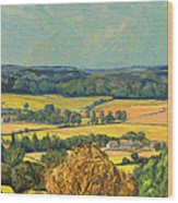Hommage To Vincent Van Gogh - Zuid Limburg Wood Print