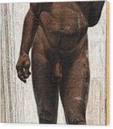 Homo Heidelbergensis Wood Print