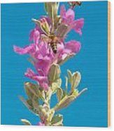 Honey Bees On Sage 1 Wood Print