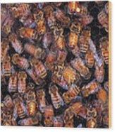 Honey Honey Wood Print