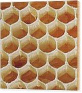 Honey In Wax Honeycomb Cells Wood Print