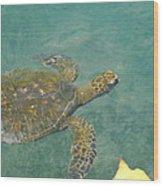 Honu Waters Wood Print