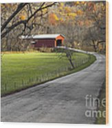 Hoosier Autumn - D007843a Wood Print