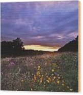 Hoosier Sunset - D007743 Wood Print by Daniel Dempster