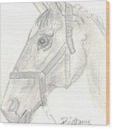 Horse 1.18.01 Wood Print
