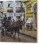 Horse And Buggy In Old Cartagena Colombia Wood Print by David Smith