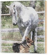 Horse And Dog Play Wood Print