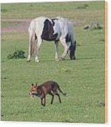 Horse And Fox Wood Print