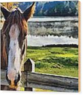 Horse At Lake Leroy Wood Print