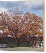 Horse Barn Hill In Autumn Wood Print