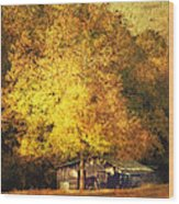 Horse Barn In The Shade Wood Print by Kathy Jennings