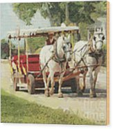 Horse Carriage Mackinac Island Michigan Wood Print
