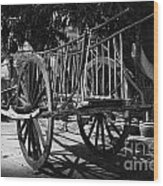Horse Cart Wood Print by Thanh Tran