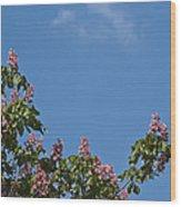 Horse Chestnut Wood Print