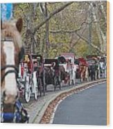 Horse-drawn Carriages Wood Print