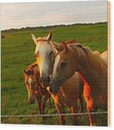 Horse Family Soft N Sweet Wood Print